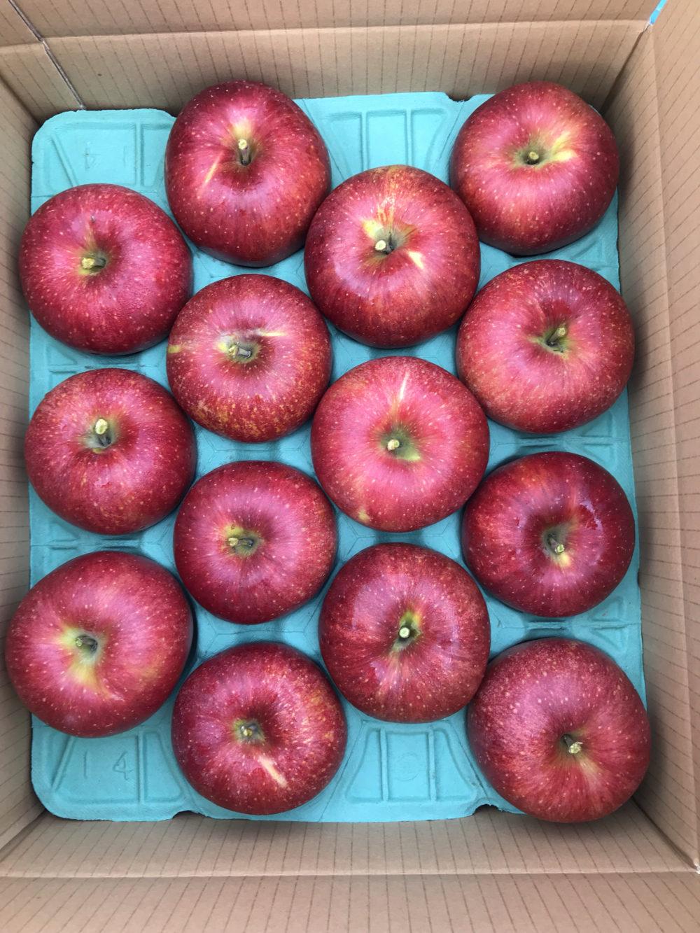 3種のりんご便(3回)